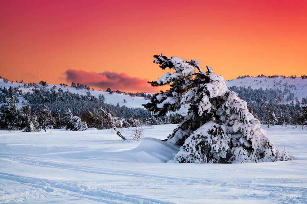 crimea-winter-landscape-on-ai-petri-mountain