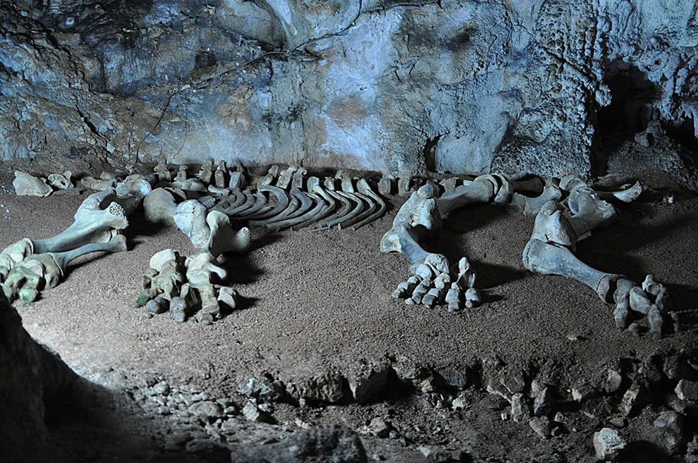 mammoth-bones-in-marble-cave-crimea-ukraine