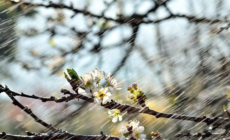 сильный ветер весна