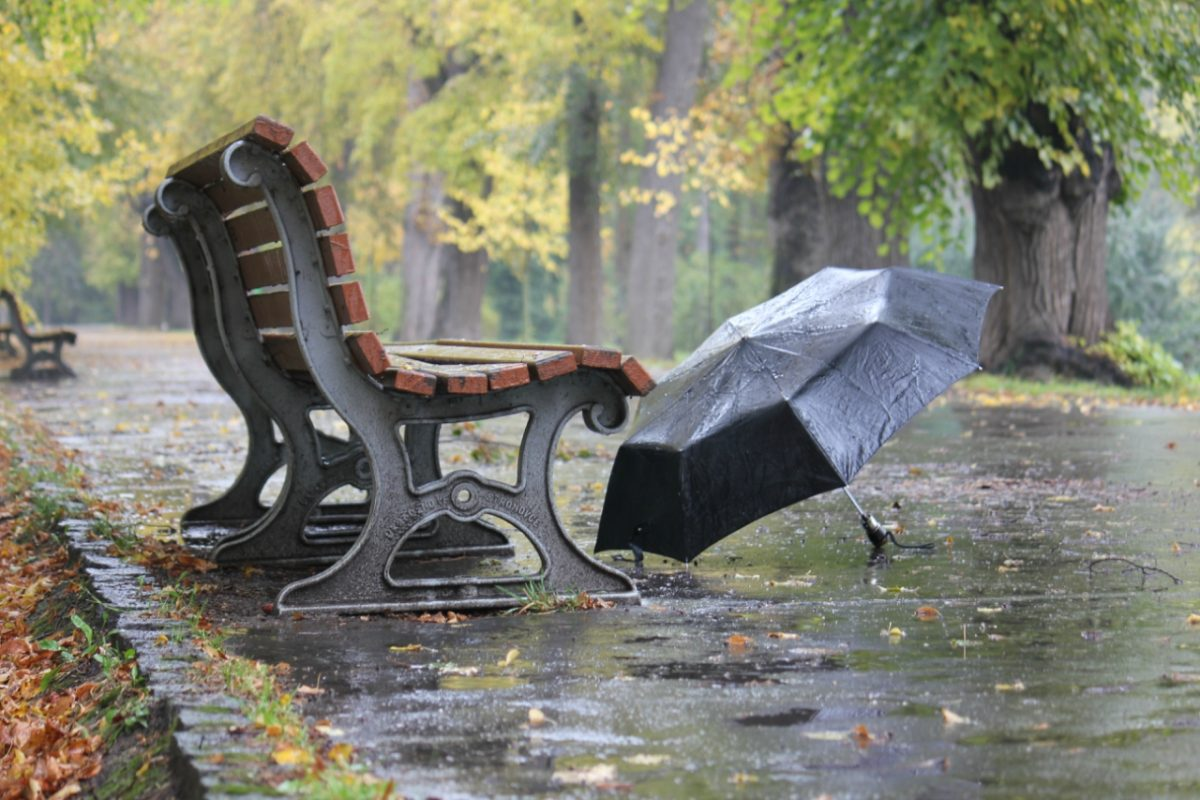 дождь зонтик осень