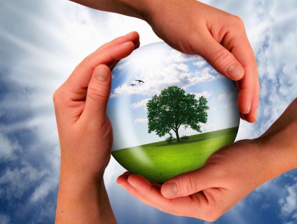 Как сделать окружающую среду чище