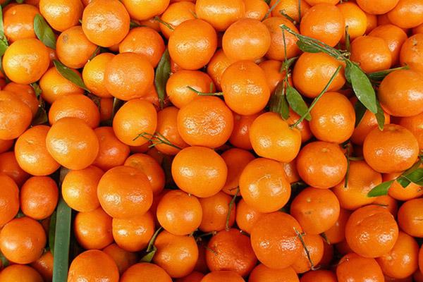 mandari